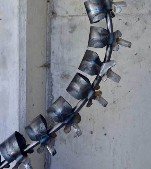 Backbone 3